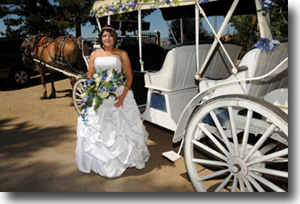 Bride arrives for her wedding at Lakeside Beach