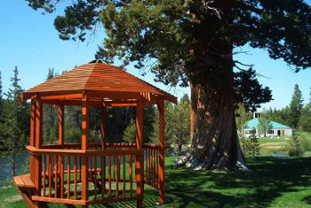 The gazebo and tree where ceremonies are performed