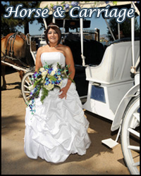 Horse and carriage wedding at Lakeside Beach
