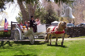 Horse and carriage arriving to the wedding site