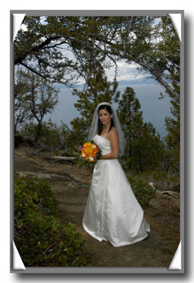 Bride posing under beautifully arched trees