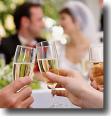 Newly married bride and groom have a reception toast