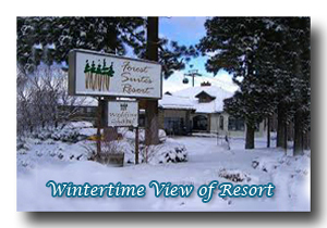 Wintertime exterior view